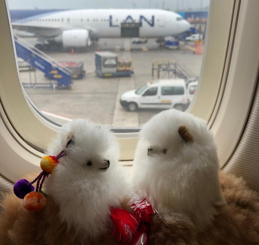 [苗旅] 秘魯-那些飛來飛去的事。南美智利航空利馬✈洛杉磯