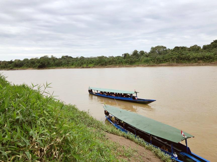 [苗旅] 秘魯-Puerto Maldonado亞馬遜雨林(上):失敗的夜遊記