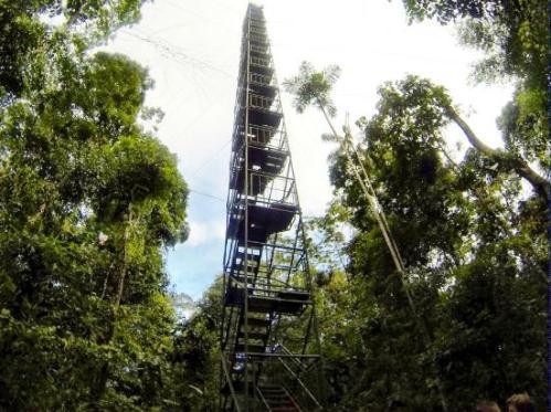 posada-amazonas (1)